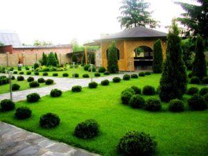 Ландшафтный дизайн садового участка с чего начать